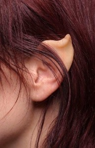 Elven or Fairy Ear Tips (pair)